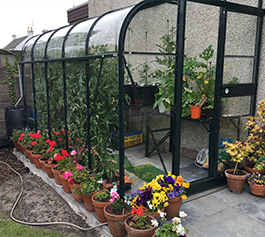 Lean-to New Greenhouses